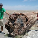 The Spectacular Natural Wonders of the Southern Colorado Plateau